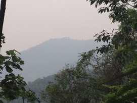 A view of the peaks of Bukit Penda just off to the left of the trail at about the 0.8km point
