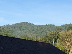 Bukit Lagong peak seen from the east