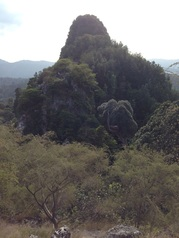 Peak #4 of Bukit Tabur East