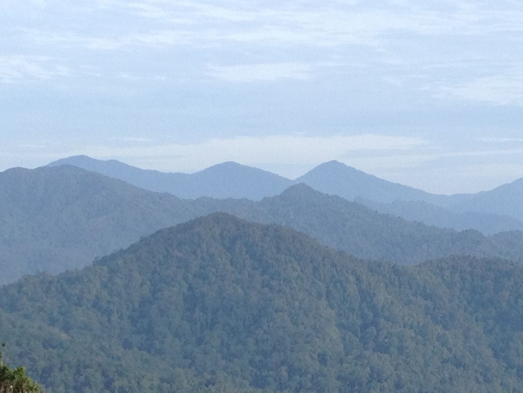 Beautiful view to the west from near the start of the trail. The three tall peaks in the background are the peaks of the Titiwangsa mountain range separating Selangor from Pahang. The middle peak is Gunung Semangkok, the tallest mountain in Selangor