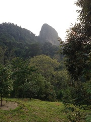 Tabur Extreme standing majestically, seen from the farm